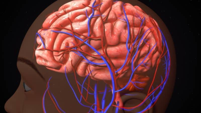 Deconstructing Cerebral Aneurysms: To Treat or Not to Treat